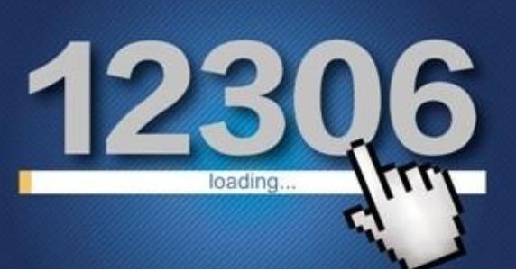 淘宝工程师 淘宝电商平台 12306网站 抢票系统